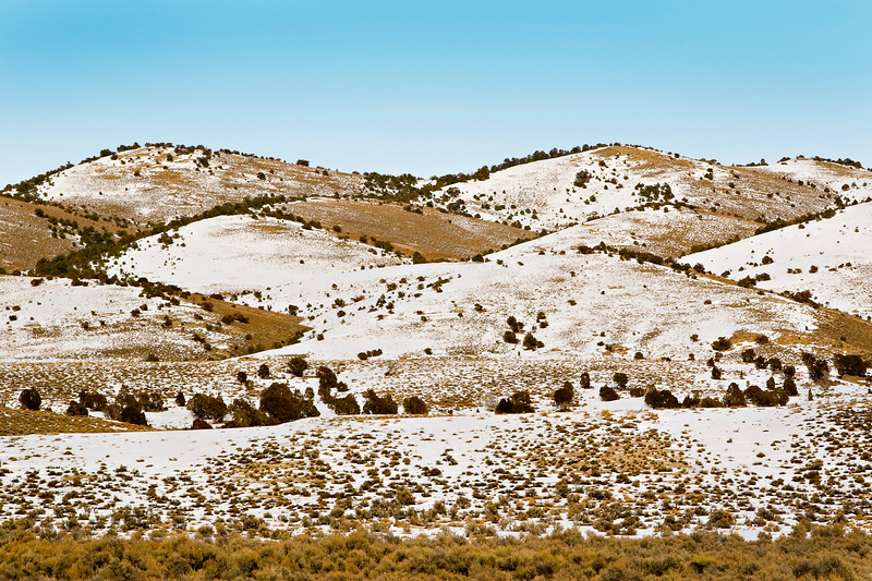 Close-up of Nevada Landscape with Light Snow