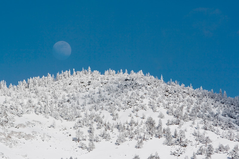 Frosty Moonrise, Sierra Nevada Mountains