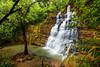 Lower Tarzan Falls  ©2015  Janelle Orth