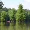 Kayakers on Stumpy Lake, Virginia Beach, VA