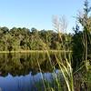 Dismal Swamp Canal, Chesapeake, VA
