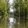 Stumpy Lake, Virginia Beach, VA