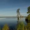 Lake Drummond, Dismal Swamp NWR, VA