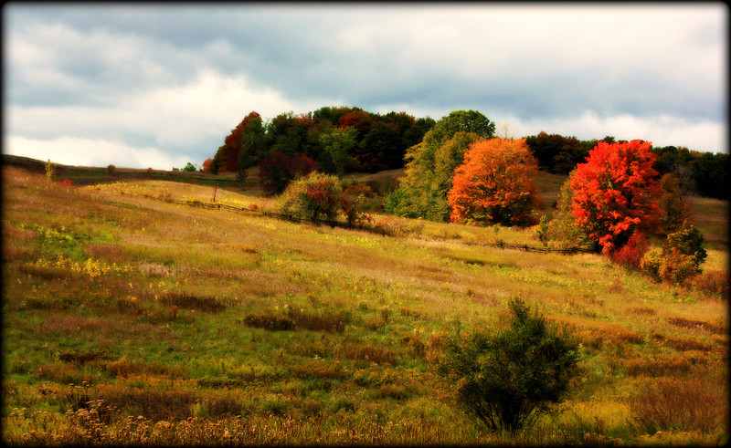 Autumn in the Mulmer Hills
