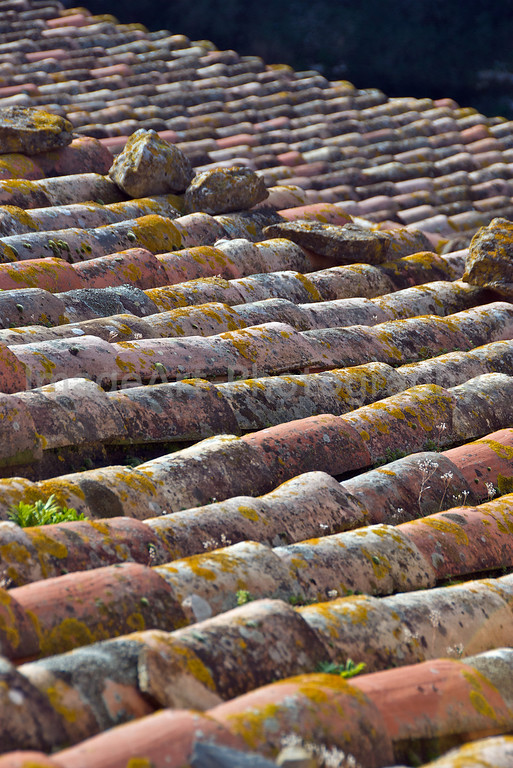 Rooftops of France