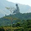 Finally see the giant Buddha from the cable car