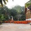 Early morning monk gathering