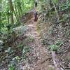 Angela coming down the Tat Fane trail