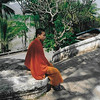 Young monk at Wat Xieng Thong on the Mekong.