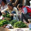 Examining the market produce.