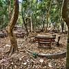 A picnic area, long abandoned.