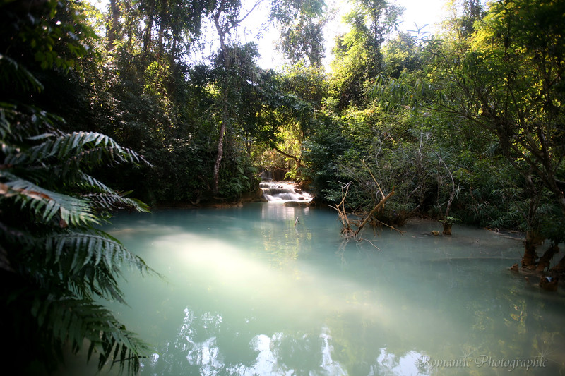 A quiet turquoise pool fed by a humble cascade.