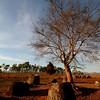 Late afternoon at the Plain of Jars (Site 1), Phonsavan.