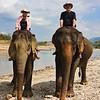 Elephant Village Camp Ride