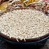 Bowl of grubs / maggots