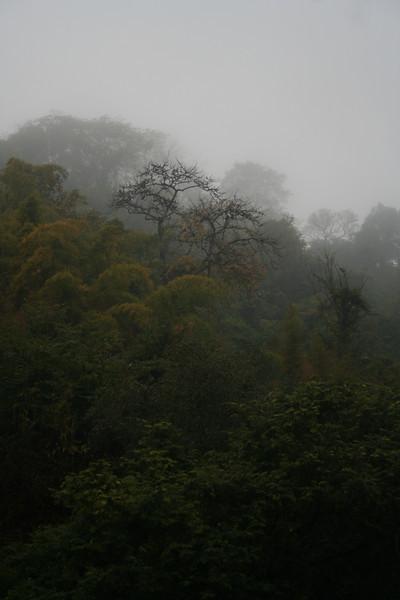 Morning mist on Mount Phu Si, Luang Prabang.
