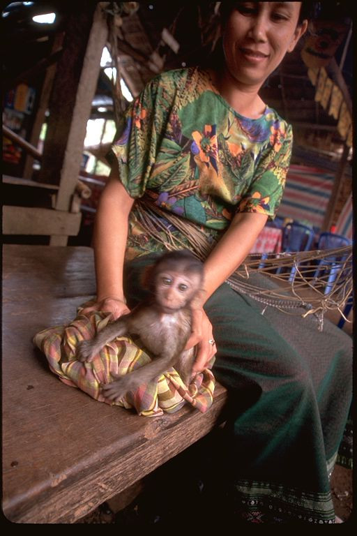 Woman with baby monkey pet, Laos