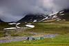 Lejren øst for Vitarstugan med udsigt mod Vitarskalet.