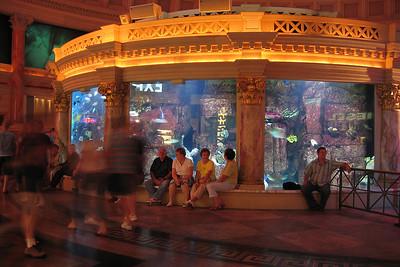 Giant aquarium in Caesar's Palace.