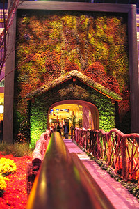 The Conservatory at the Bellagio was breathtaking! It was decorated with a Thanksgiving theme.