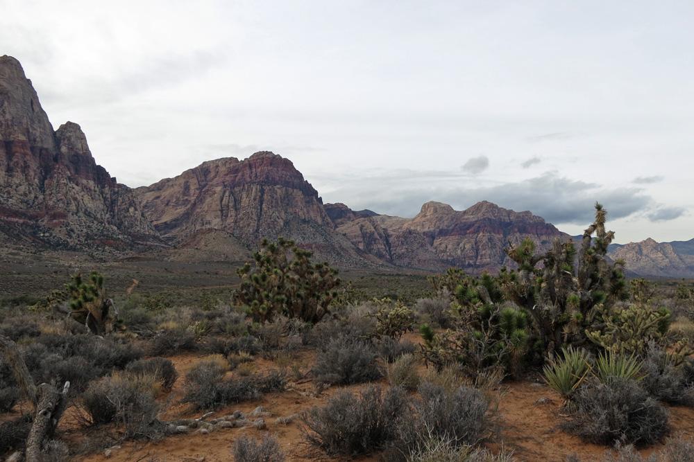 Old Nevada desert