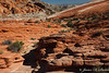Valley of Fire State Park NV-4739