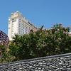 Monte Carlo Lilacs