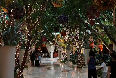 Vegas-Downtown-jlb-Sep25-Oct03-09-7804f