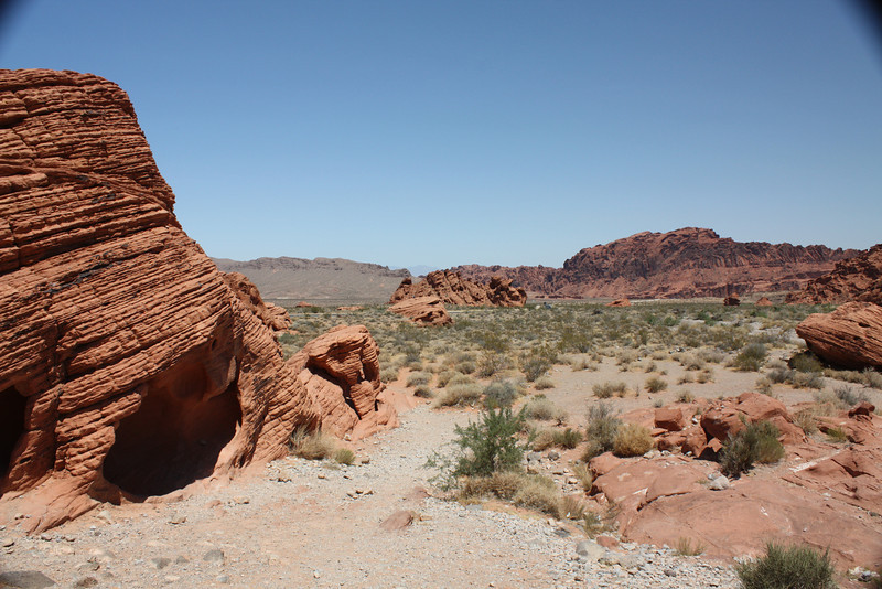 Valley of Fire - If you open the original size, you'll see abby on that rock in the far distance