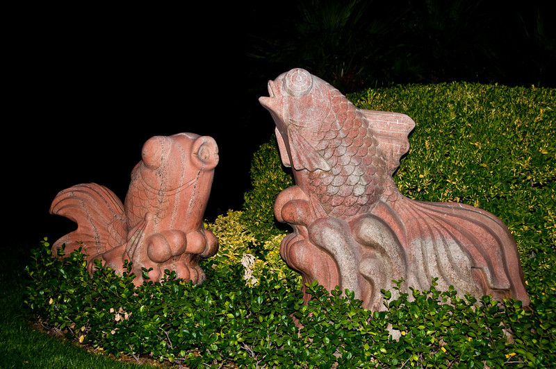 Night Photos taken around the Mirage hotel
