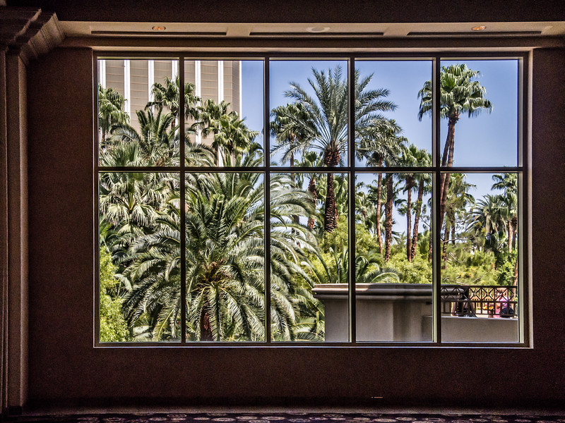 View from one of the window at the Mandalay Bay Hotel going to the Photoshop World Expo.