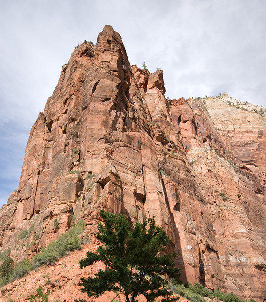 Afternoon at Zion National Park, Utah