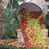 Bellagio's Autumn display (those are real apples)