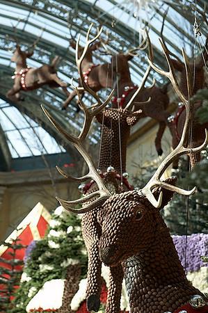 Reindeer in the Bellagio.