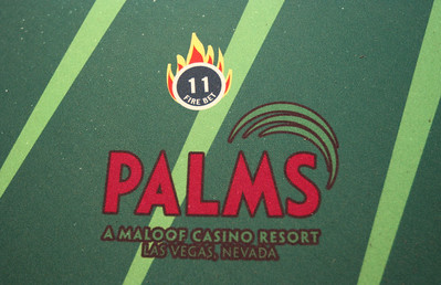 PALMS ALL IN