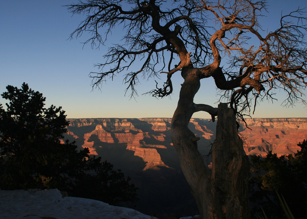 These photos are in reverse order to show the Grand Canyon first.  Scroll down to see more then go to the next page from the bottom.