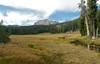 Lassen Meadow Pano