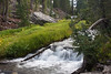 Lassen National Park<br /> <br /> Photo by Deb