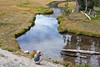 Lassen National Park<br /> <br /> Photo by Deb