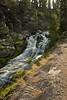 Lassen National Park<br /> <br /> Photo by Dennis