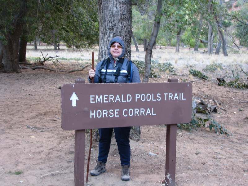 Taking the shuttle from the visitor center to Emerald Pools. We were dropped off at Zion Lodge and made our way to the trail head.