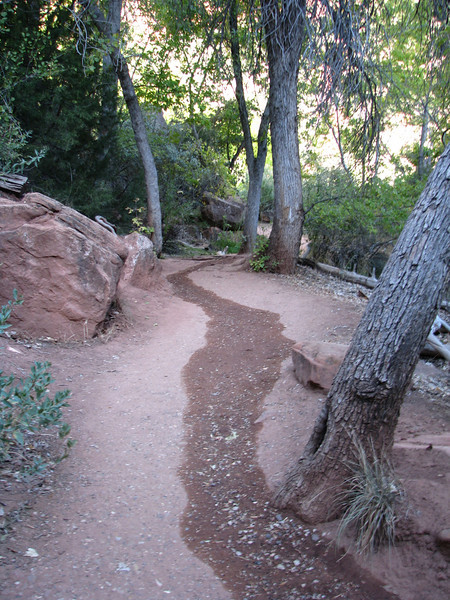 Water could appear anywhere on the trail.