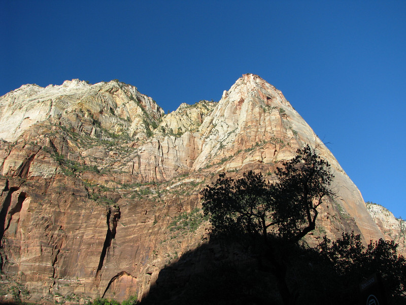Much of Zion's visitor center is still in the mountain's shadow. We'll be going to the Emerald Pools for our first excursion.