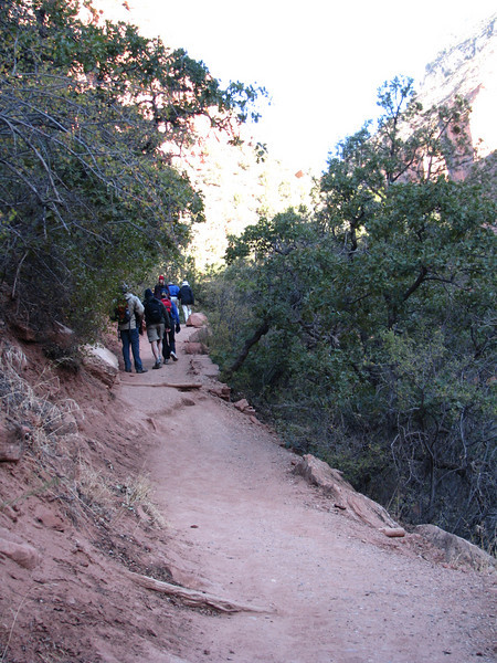 A gentle raise in the trail makes for easy walking.
