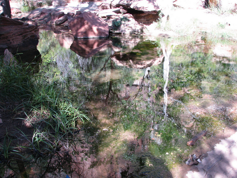 The middle Emerald Pool,great reflextion!