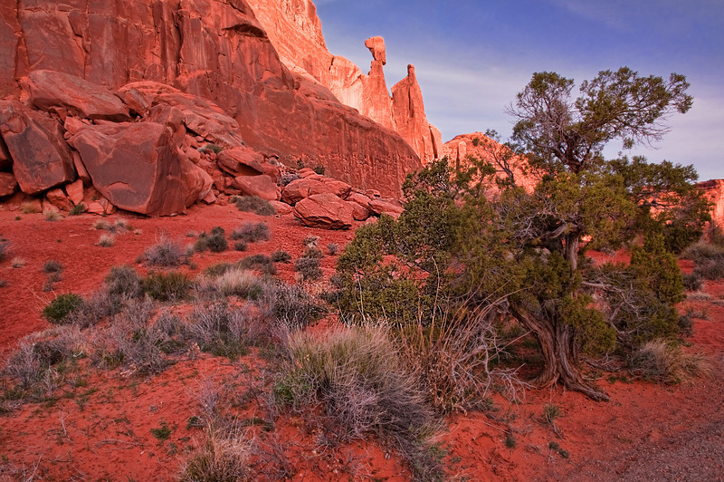 Arches National Park - Early Morning
