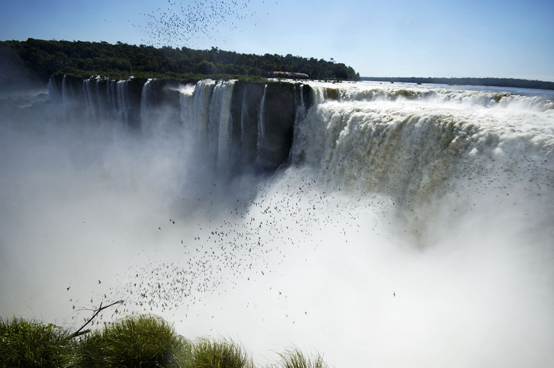 The Iguazu Gorge, and the birds
