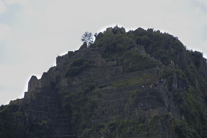 Machu Picchu, the view of the top of Huayna Picchu