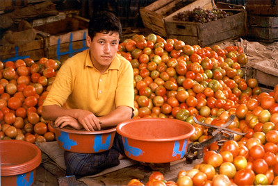 The tomatoes' seller. Tiznit, Morocco.