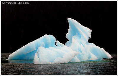 """BLUE ICE # 1"", LeConte Bay, Alaska, USA."